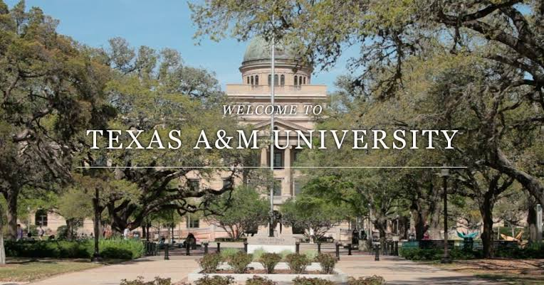 منحة جامعة تكساس إيه آند إم