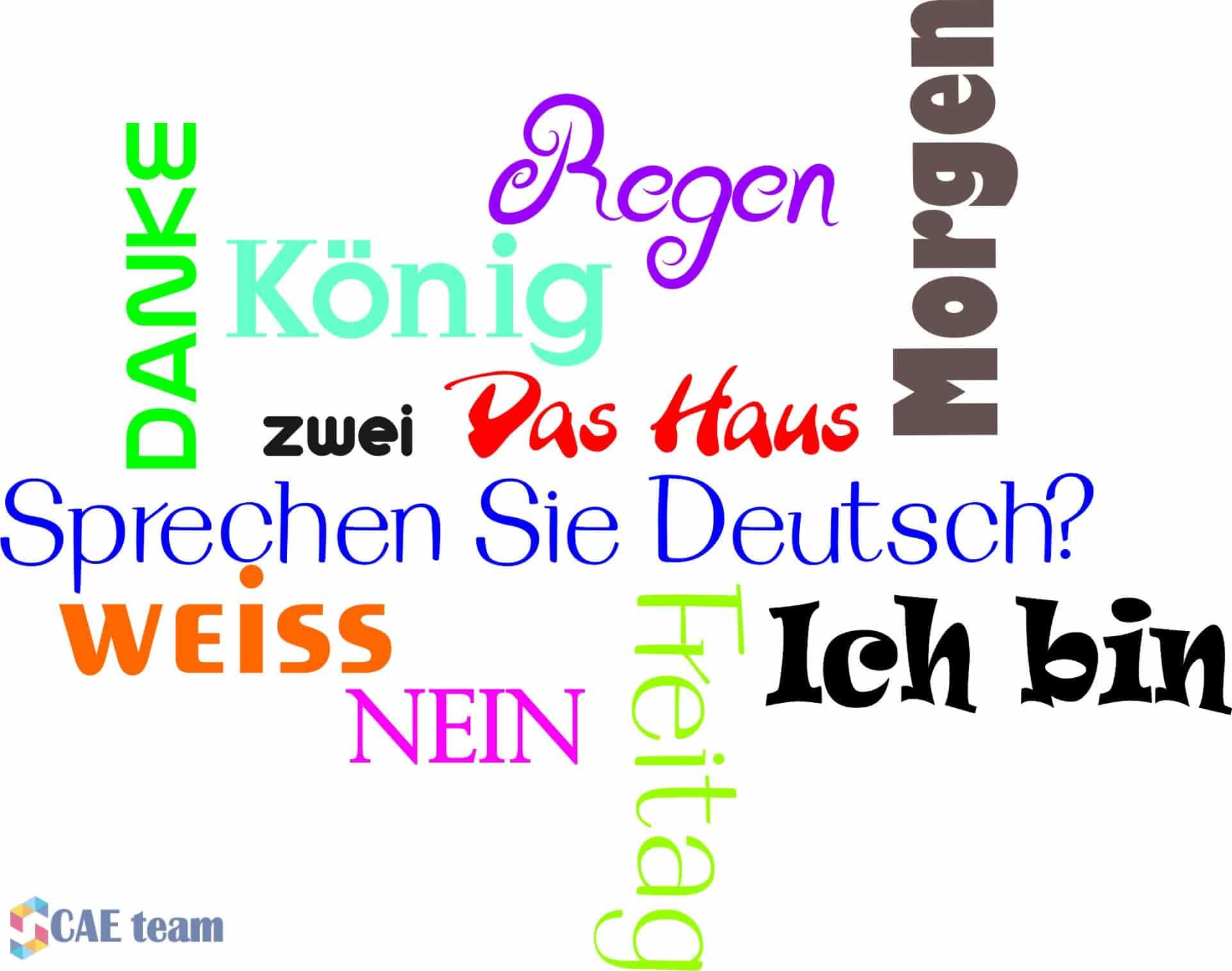 فرص دراسة اللغة الألمانية في ألمانيا (ممولة بالكامل)