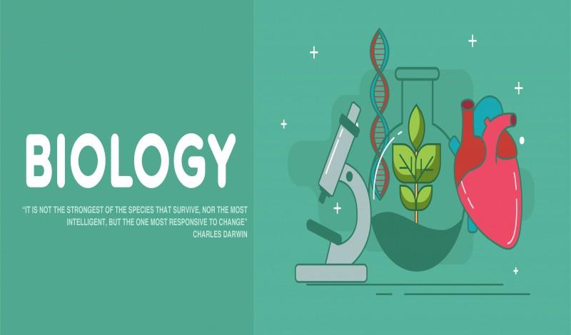 البيولوجيا – علم الأحياء : كل ما تريد معرفته عن تخصص البيولوجيا