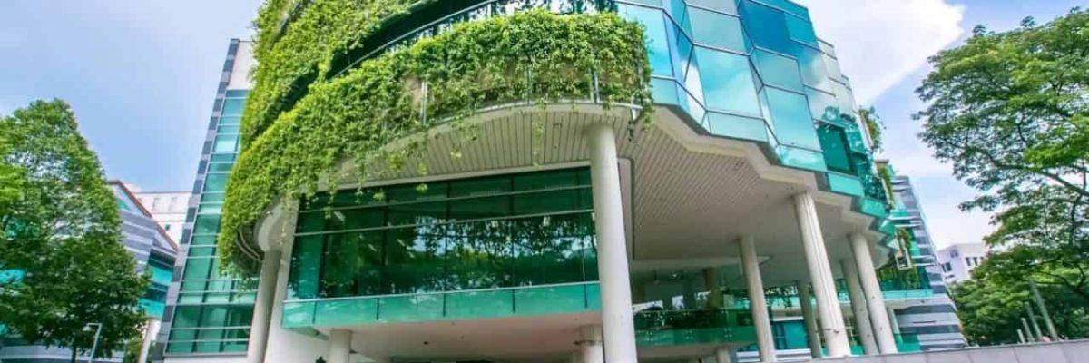 منح جامعة سنغافورة للإدارة لدراسة البكالوريوس في كلية نظم المعلومات 2021