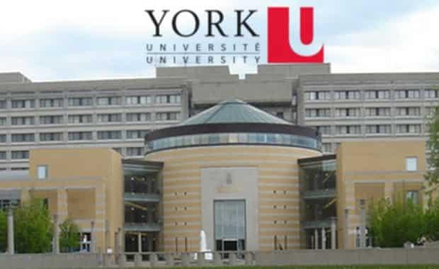 منحة جامعة يورك لدراسة البكالوريوس في الكيمياء في المملكة المتحدة (ممولة)