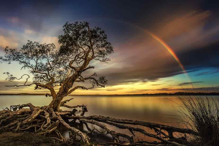 فرصة التقديم في مسابقة Capture Mother Nature Photo Contest والحصول على جائزة 600 دولار أمريكي من ViewBug لعام 2021