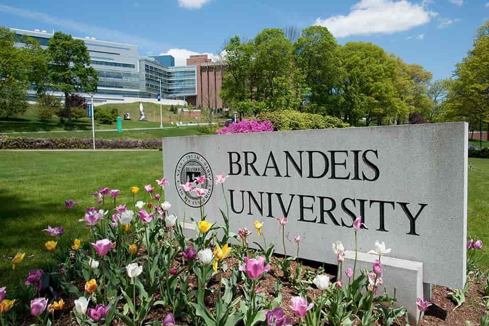 منحة جامعة برانديز لدراسة البكالوريوس بالولايات المتحدة الأمريكية 2021 (ممولة)