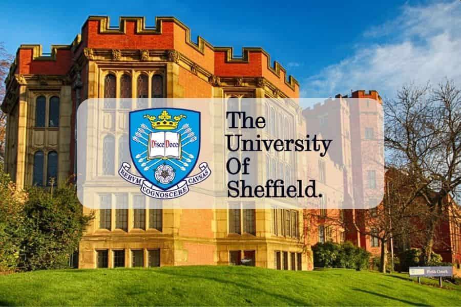 منحة Choueifat الدولية في جامعة شيفيلد للحصول على البكالوريوس في المملكة المتحدة 2021